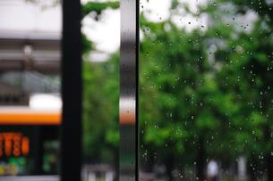 雨上がりのオブジェの写真素材 [FYI00270163]
