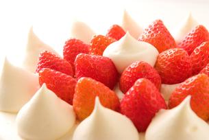 ショートケーキの写真素材 [FYI00270499]
