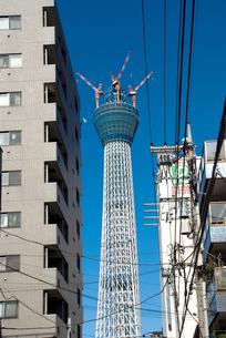 東京スカイツリーの写真素材 [FYI00270597]