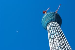 東京スカイツリーの写真素材 [FYI00270598]