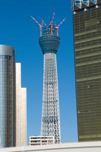 東京スカイツリーの写真素材 [FYI00270607]