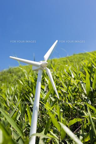 風力発電の模型と笹原の素材 [FYI00270674]
