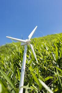 風力発電の模型と笹原の写真素材 [FYI00270674]