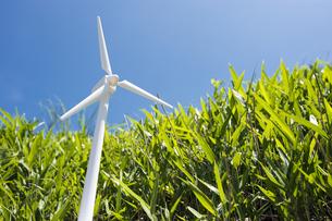 風力発電の模型と笹原の写真素材 [FYI00270679]