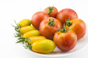 皿の上の二種のトマトの写真素材 [FYI00270689]