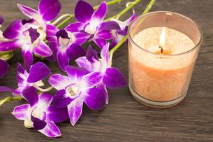 紫のデンドロビウムの花とオレンジのグラスキャンドルの写真素材 [FYI00270751]