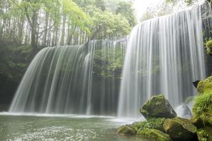 緑の中の鍋ヶ滝の写真素材 [FYI00270857]