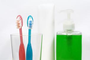2本の歯ブラシのアップの写真素材 [FYI00270994]