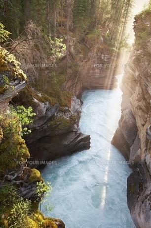 アサバスカ渓谷の写真素材 [FYI00271137]