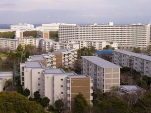 富岡総合公園から見た並木団地の写真素材 [FYI00271162]