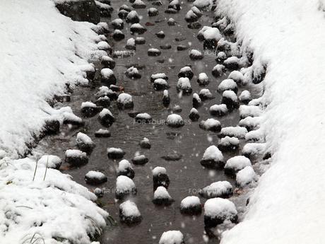 数十年ぶりの都会の大雪と公園の雪景色の素材 [FYI00271188]