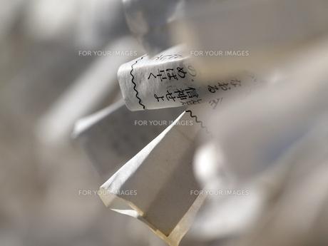 神社の前に結ばれている無数のおみくじの写真素材 [FYI00271290]