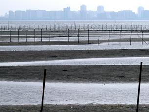東京湾船橋の干潟三番瀬とビル街の写真素材 [FYI00271336]