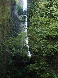 千葉県鋸山の百尺観音の大岩壁と隙間の写真素材 [FYI00271367]