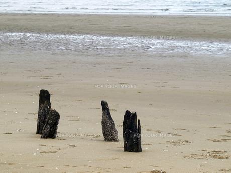 浜辺のオブジェの素材 [FYI00271482]