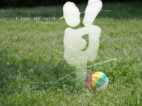 We love the earth 野草の写真素材 [FYI00271487]