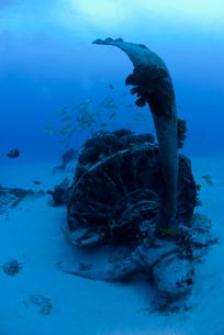 海底のプロペラの写真素材 [FYI00271612]