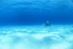 砂地を泳ぐダイバーの素材 [FYI00271621]