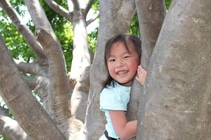 木登りをする女の子の素材 [FYI00271677]