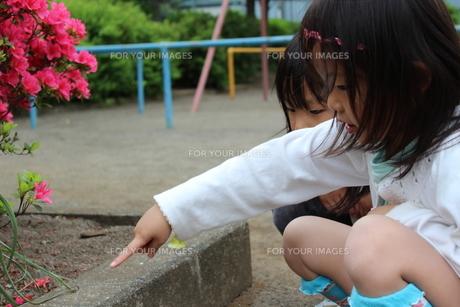 指を刺す女の子の素材 [FYI00271687]