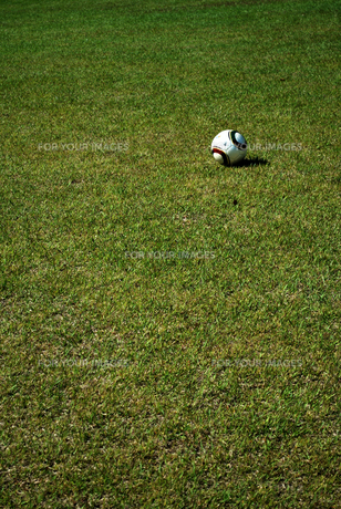 サッカーボールと芝の写真素材 [FYI00271704]