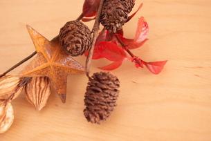 秋の木の実の素材 [FYI00271849]