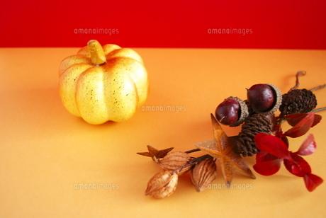 ハロウィンのかぼちゃの写真素材 [FYI00271921]