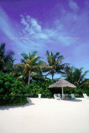 モルジブの風景の写真素材 [FYI00272975]