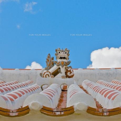 沖縄 屋根上のシーサーの写真素材 [FYI00273035]