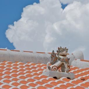 沖縄 住宅屋根のシーサーの写真素材 [FYI00273056]