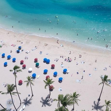 ハワイ ワイキキビーチビーチパラソルの写真素材 [FYI00273072]