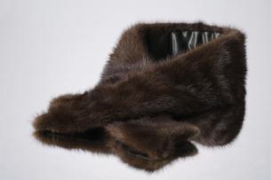 毛皮の写真素材 [FYI00273301]