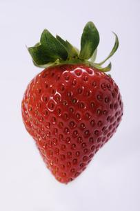 苺の写真素材 [FYI00273462]
