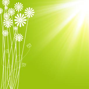 花模様の写真素材 [FYI00273792]