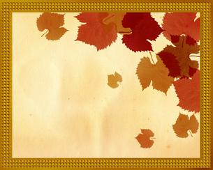 紅葉とフレームの写真素材 [FYI00273799]