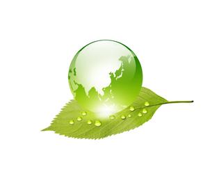エコロジーの写真素材 [FYI00273834]