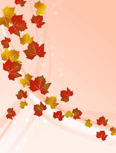 色づくブドウの葉の写真素材 [FYI00273979]