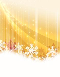 雪の結晶の写真素材 [FYI00274008]