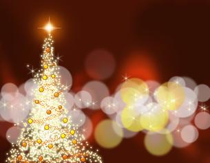 クリスマスツリーの写真素材 [FYI00274216]