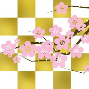 和風桜の写真素材 [FYI00274387]