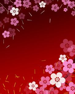 梅の花の写真素材 [FYI00274391]