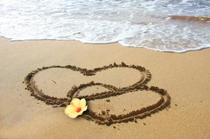 ビーチのバレンタインの写真素材 [FYI00274627]