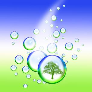 エコロジーの写真素材 [FYI00274657]