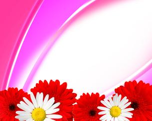 花のフレームの写真素材 [FYI00274840]