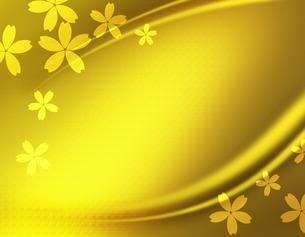 サクラとゴールドな背景の写真素材 [FYI00274883]