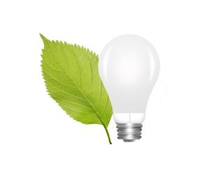 電球と葉の写真素材 [FYI00274952]