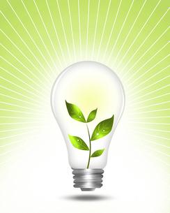 クリーンエネルギーの写真素材 [FYI00274975]