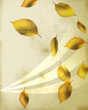 舞う落ち葉の写真素材 [FYI00275228]
