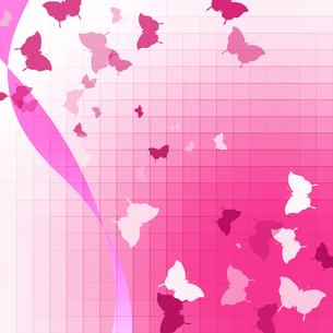 蝶の写真素材 [FYI00275263]
