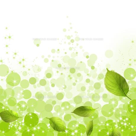 エコロジーの素材 [FYI00275365]